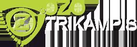 Ozo trikampis svetaines kurimas
